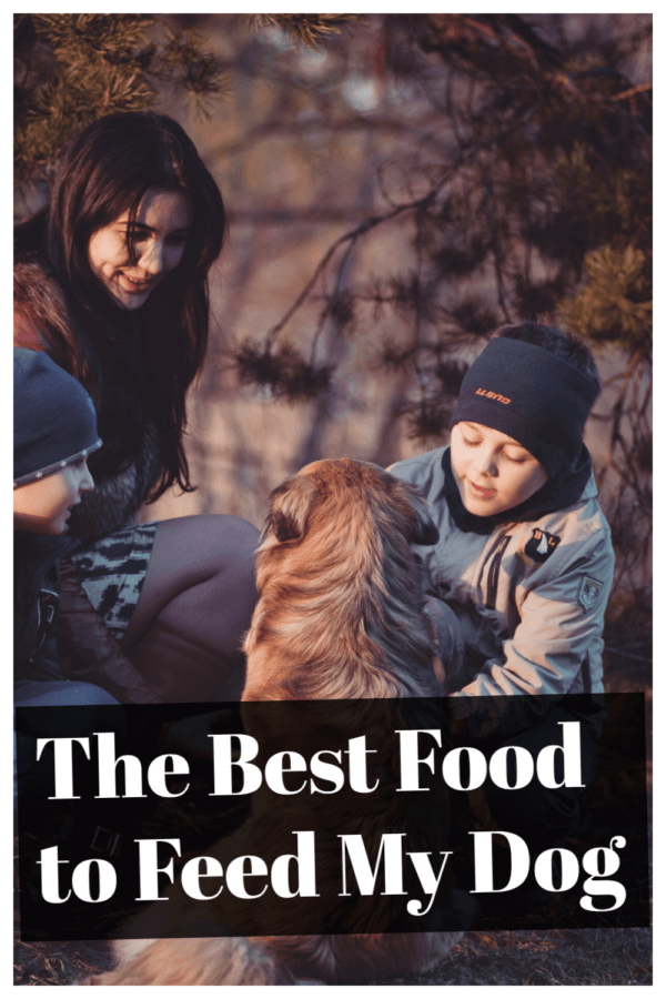 What is The Best Food to Feed My Dog?