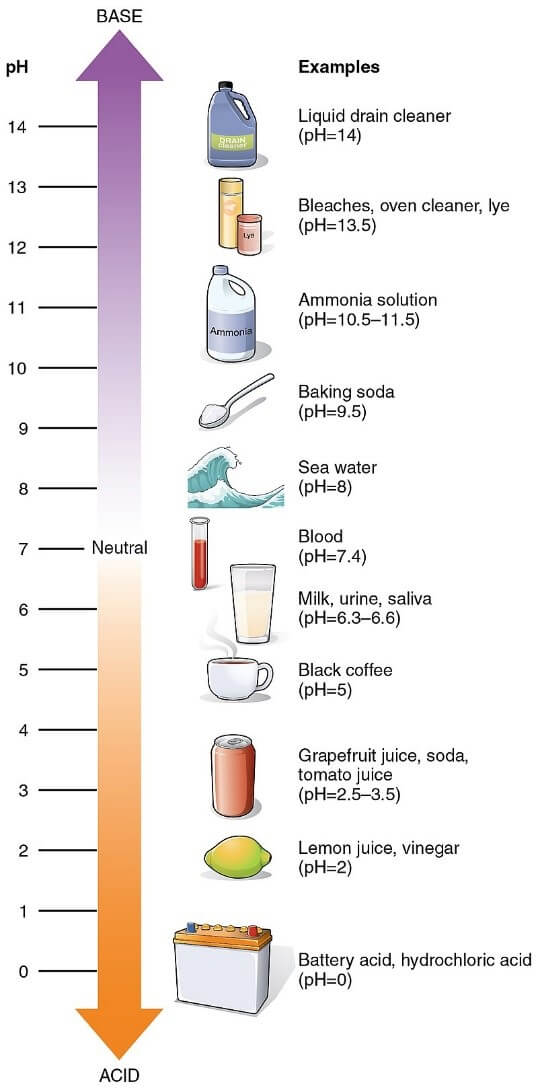 pH values of some common substances