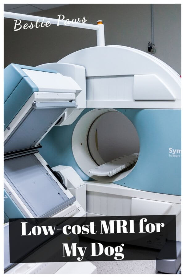 Cheap/Low-Cost MRI for Dogs