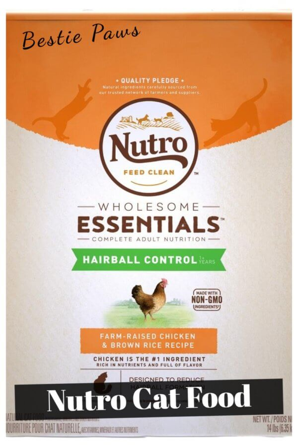 Where to Buy Nutro Cat Food